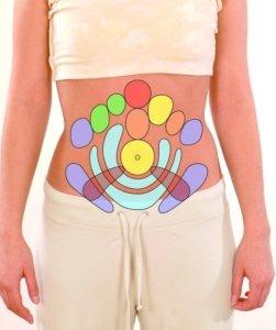 Die Organzonen am Bauch
